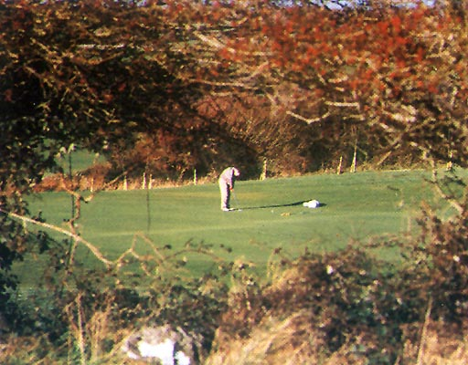 Gort Golf Club - Naturally Wonderful